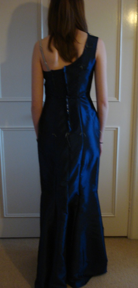 The Perfect Prom Dress (5/6)
