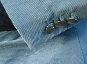 Silver horsey buttons, appropriate for living in the country.